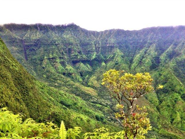 Hike Kauai With Me Tours