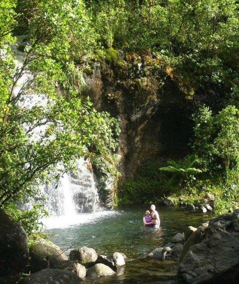 Want To Go Hiking On Kauai But Feel Like You Need A Guide?