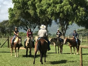 Princeville Ranch Stables 2