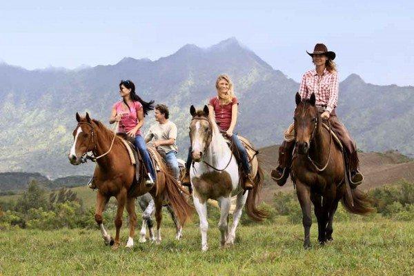 Princeville Ranch Stables 3