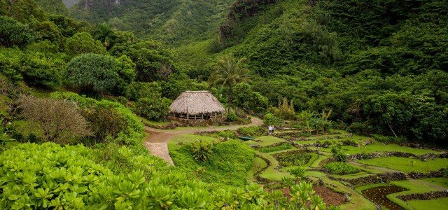 What To See On Kauai – Limahuli Valley – Kauai – Hawaii