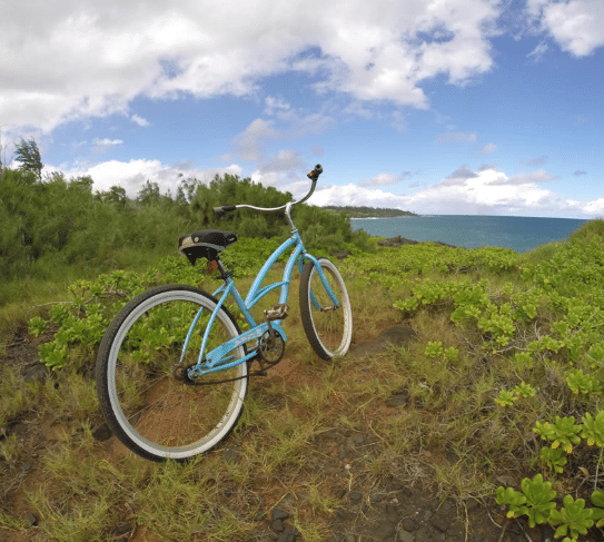 Bike Rentals 2-Pedal 'N Paddle
