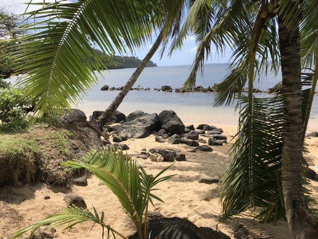 Great Snorkeling At Anini Beach – Kauai – Hawaii