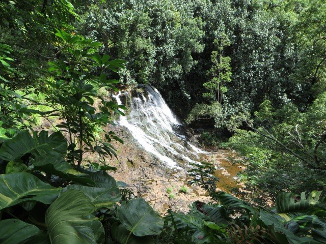 Hoopii Falls - Kauai - Hawaii