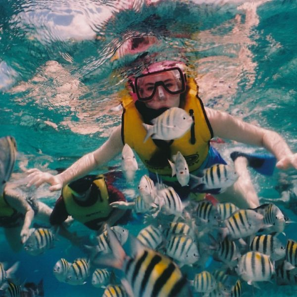 Full Face Snorkeling Masks Or Traditional Snorkeling Equipment For Your Hawaii Vacation