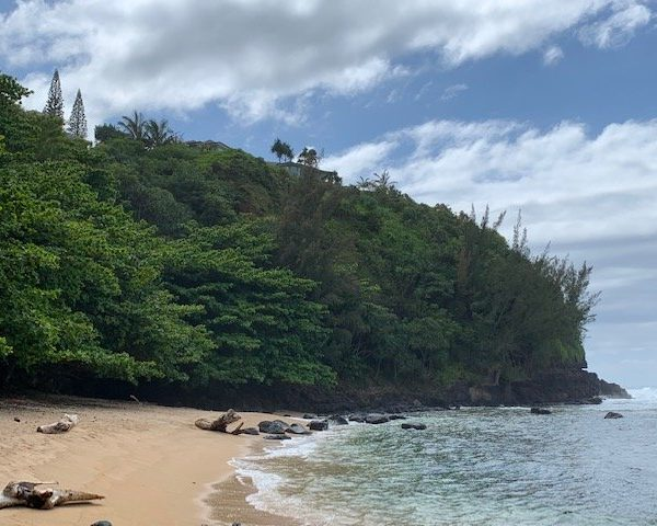 Living With Social Distancing On Kauai – Sea Lodge Beach And More