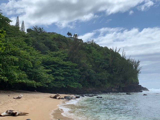 Living With Social Distancing On Kauai – Sea Lodge Beach And More