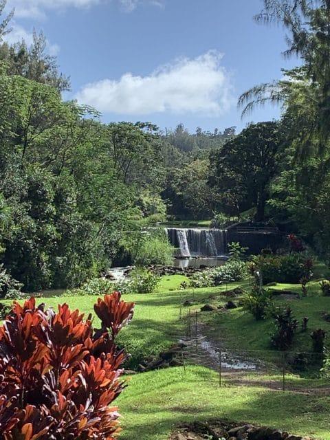 Stone Dam - Wai Koa Trail